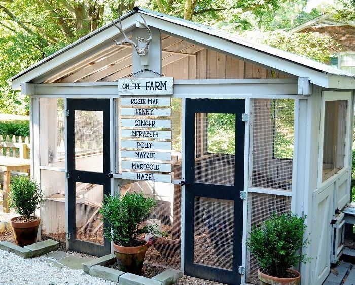 Free plans for backyard chicken frames to grow greens that will last for  months