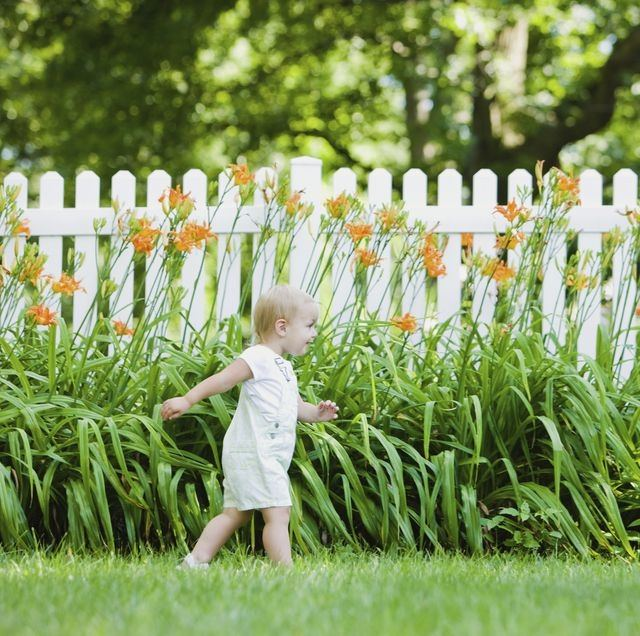 In finding the best rustic backyard fence ideas, consider building lattice  fence