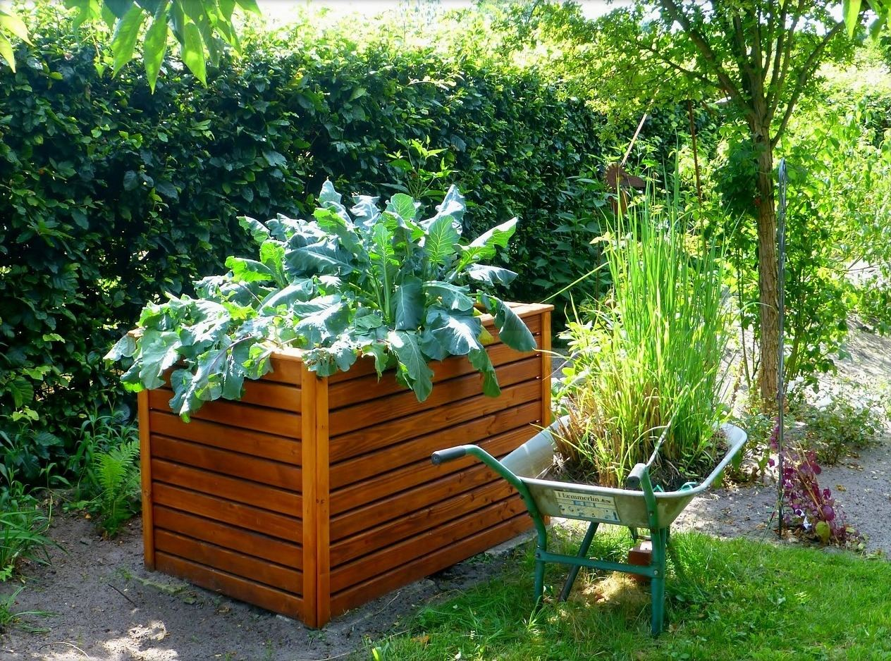These vegetable garden designs require a little more space