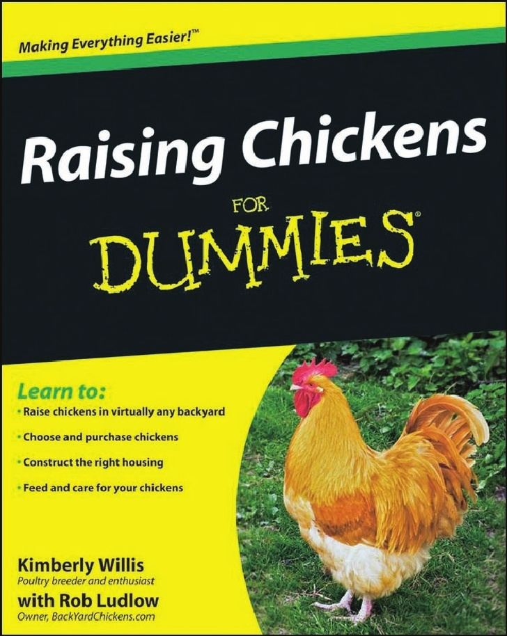 Keeping Chickens for Beginners: Keeping Backyard