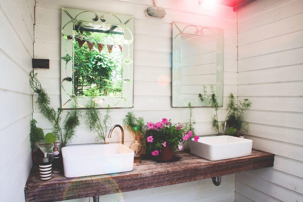 house plants for bathroom