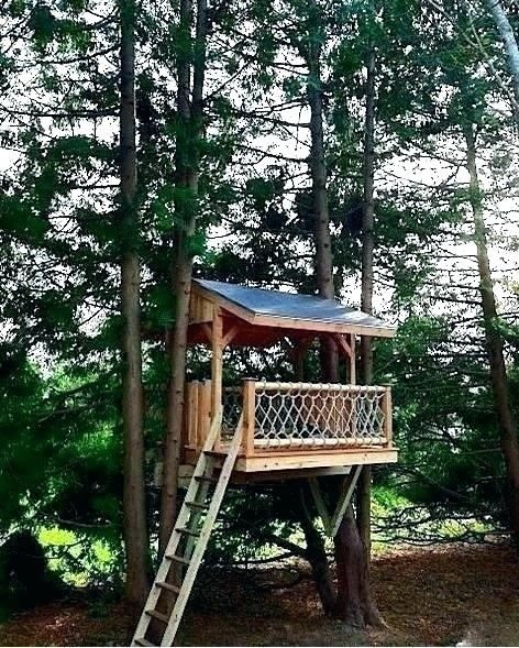 A homemade treehouse built just for fun
